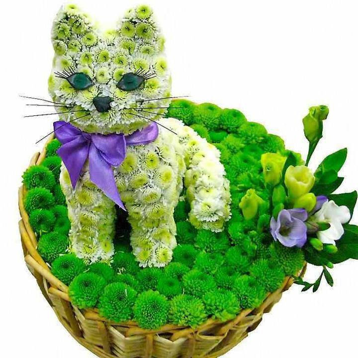 Kitty is made of flowers