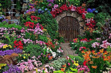 Now that is a garden!