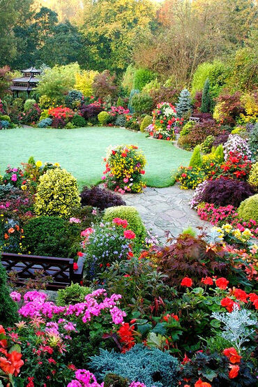 What an amazing yard!