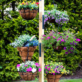 Hanging Baskets Gardening