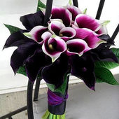 Amazing bouquet of Calla Lillies