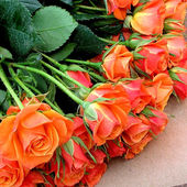 Bunch of Orange Roses