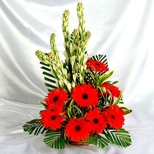 Gerbera and Gladiolus