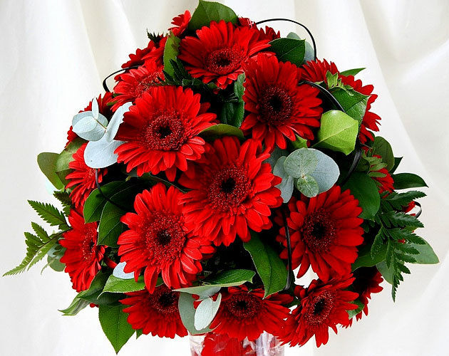 Red Gerbara Bouquet