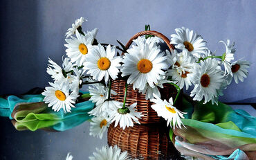 Basket of Beautiful Flowers