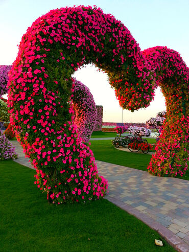 The miracle garden of Dubai - floral arch