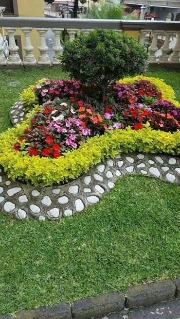 Flower bed in the garden