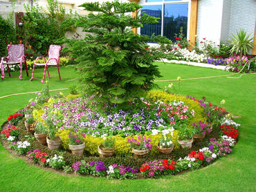 Pretty Garden Ideas